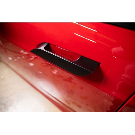 Chrome delete - Tesla Model S